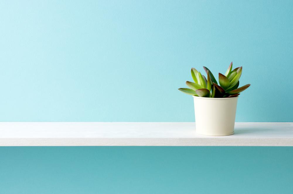 Marketing mit White Papers: 7 Vorteile, die sich lohnen